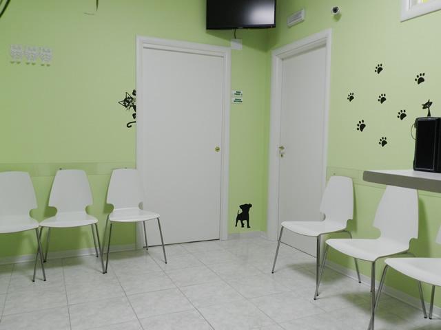 clinica-veterinaria-zampiland (1)