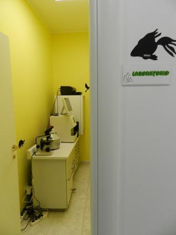 clinica-veterinaria-zampiland (13)