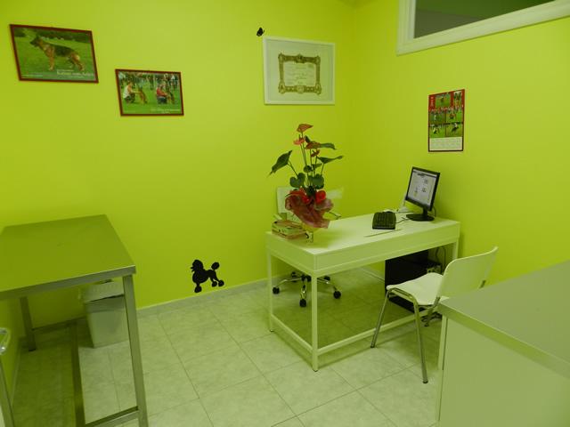 clinica-veterinaria-zampiland (15)