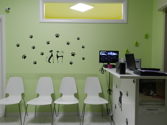 clinica-veterinaria-zampiland (2)