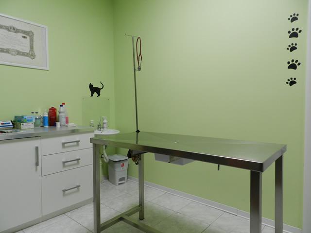 clinica-veterinaria-zampiland (3)