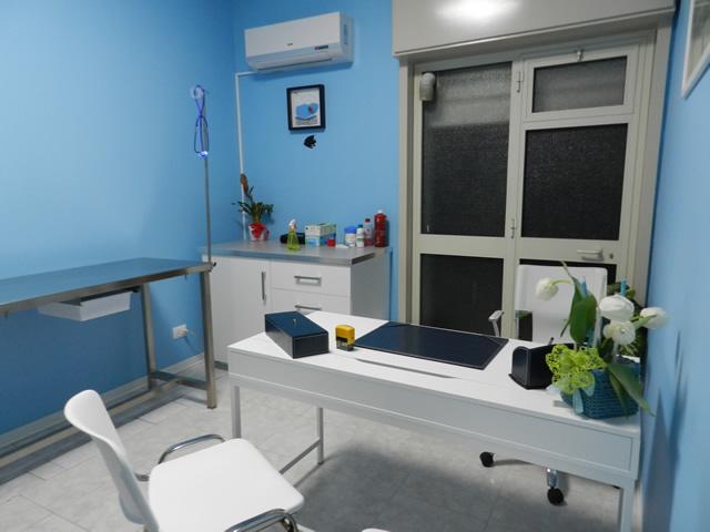 clinica-veterinaria-zampiland (5)